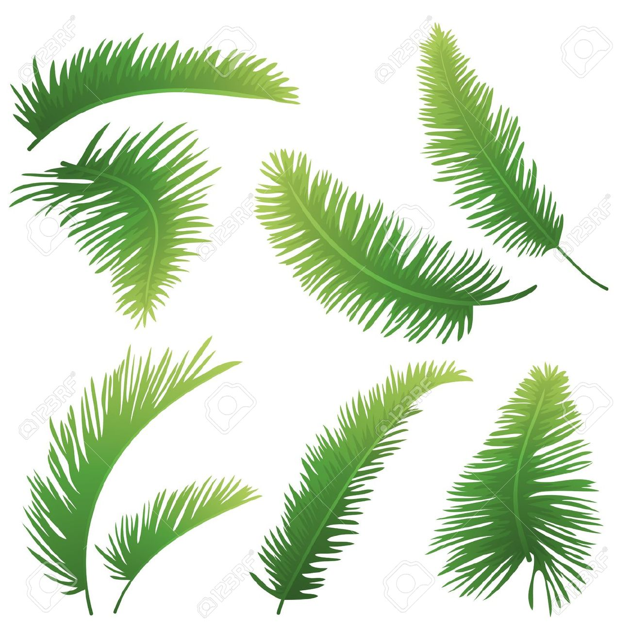Palm frond palm leaf clipart #3