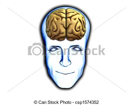 Illustration head with brain frontal view clipart.