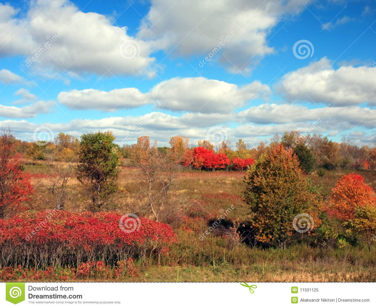 Fall Colors In Frontenac State Park Royalty Free Stock Photo.