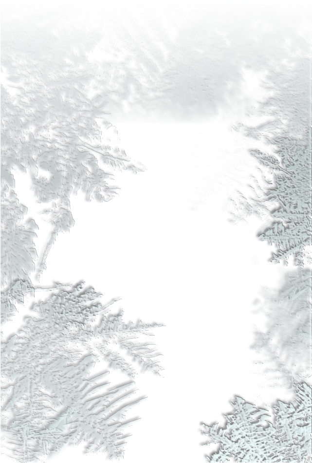HD Frost Overlay Png.