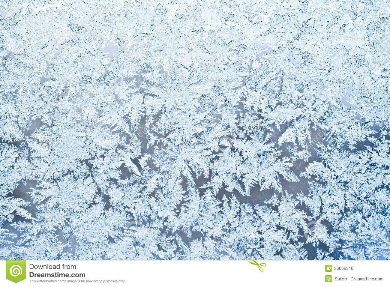 Frost Pattern Stock Photo.
