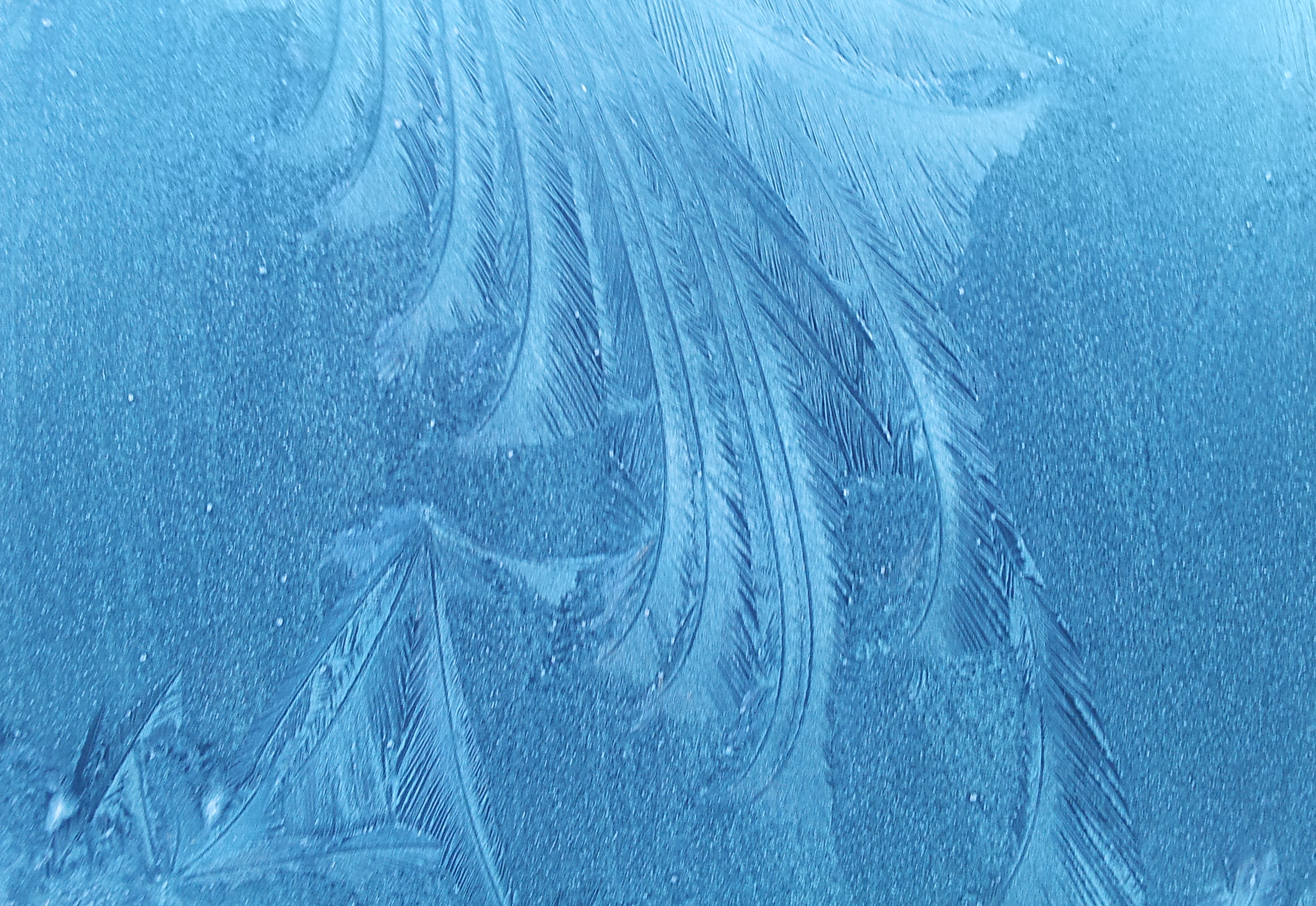 File:Frost.