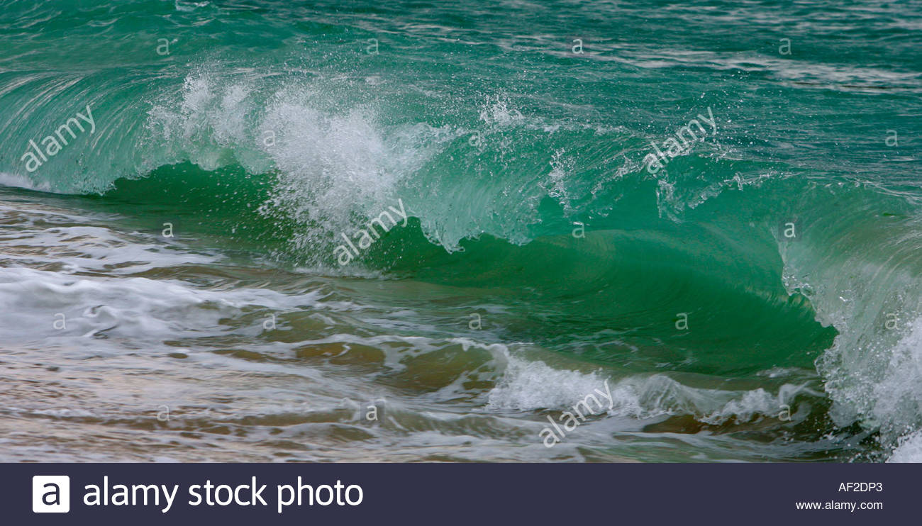 Sea Wave Water Storm Dynamic Sea Froth Greenish Blue Water Beach.