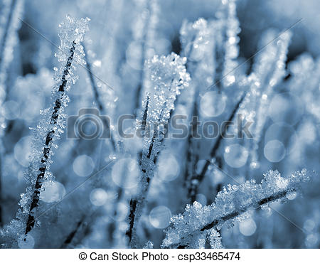 Picture of Frozen grass close up. Nature background. csp33465474.