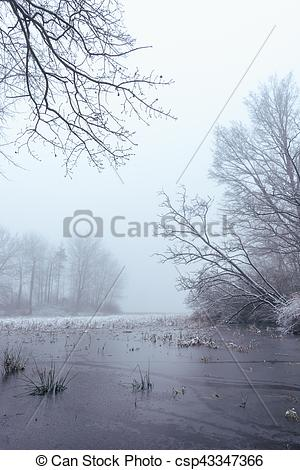 Stock Image of Frozen pond in foggy morning.