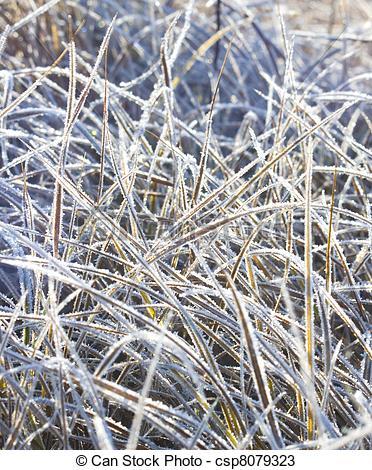 Grass Clip Art Frozen.