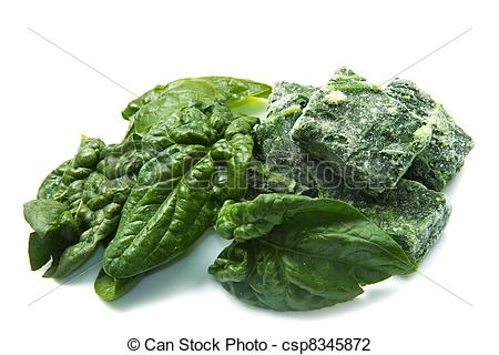 Stock Photo of fresh and frozen spinach csp8345872.