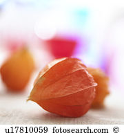 Chinese gooseberry Stock Photos and Images. 1,708 chinese.