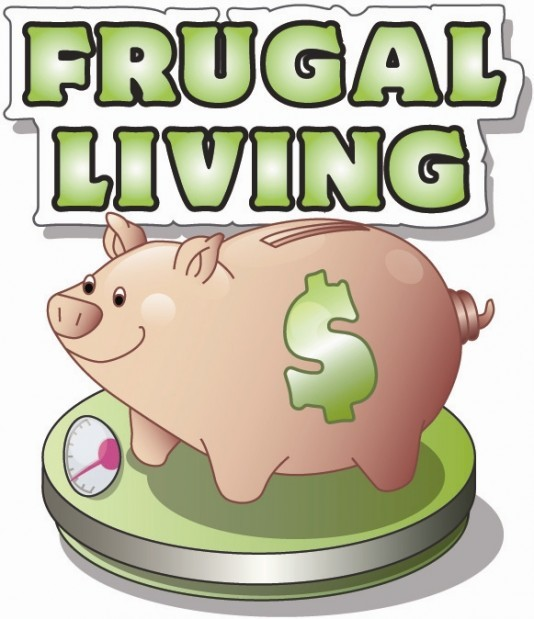 Frugal Living: Cheaper options for common household items.