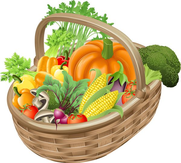 Fruits and vegetables basket clipart 3 » Clipart Station.