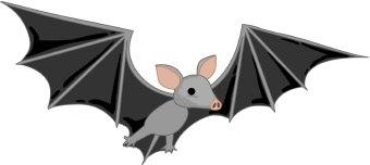 Fruit bat clipart.