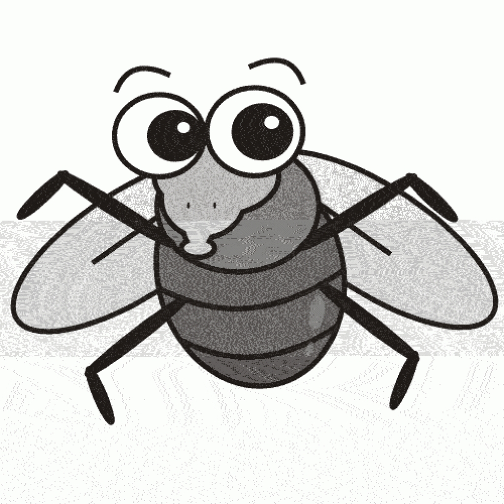 fly clipart with regard to fruit fly clipart fruit fly clipart.