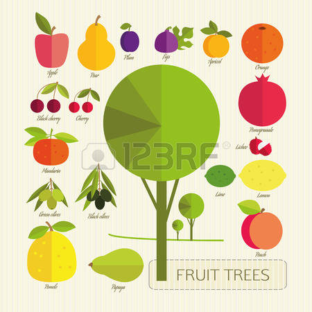 2,687 Fruit Growing Stock Vector Illustration And Royalty Free.