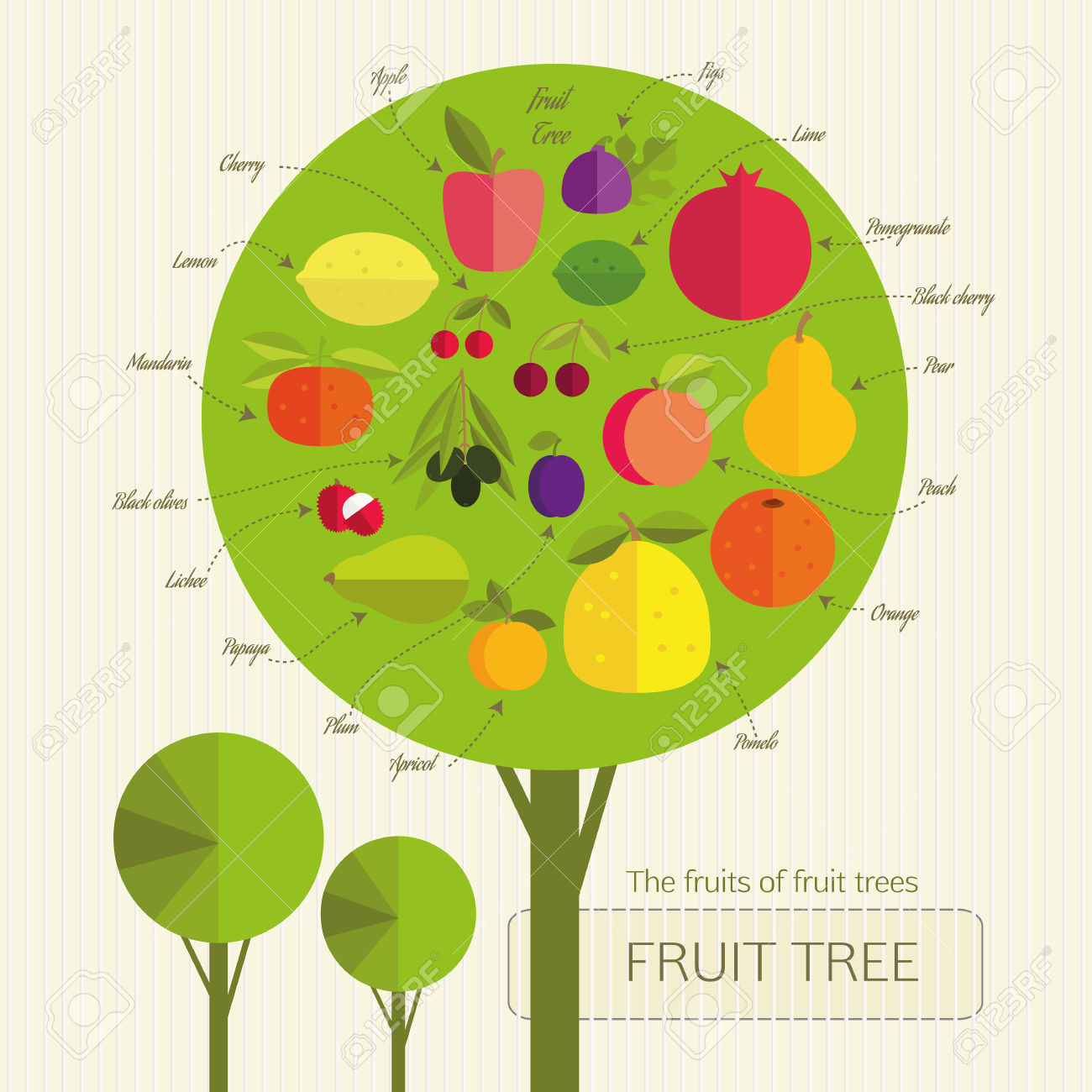 Conditional Fruit Tree With Fruits That Grow On Trees From.