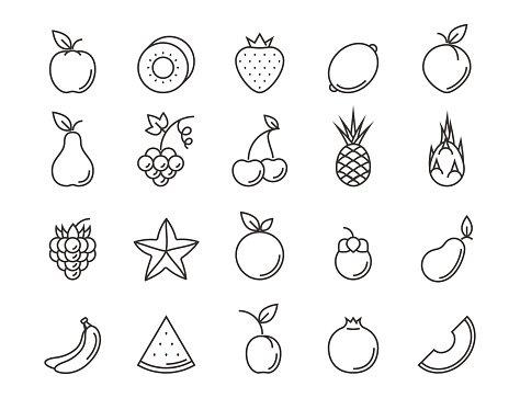 Fruit outline icon set. Vector line illustration for your.