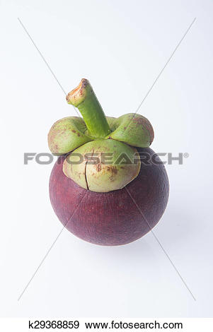 Stock Photograph of Mangosteen fruit and cross section showing the.