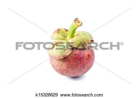 Stock Photograph of Mangosteen fruit. flesh queen of fruits.