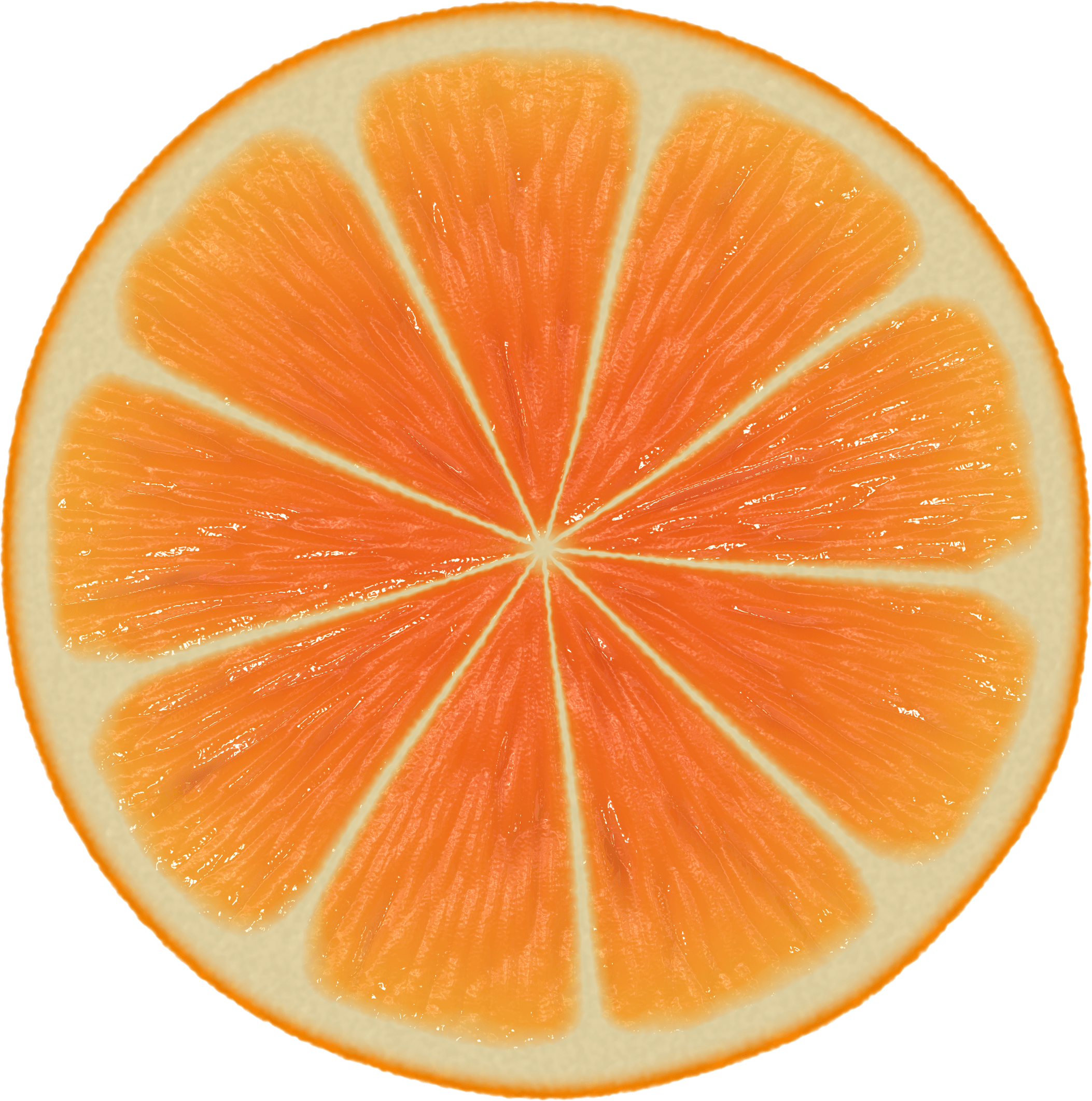 Large Orange Slice transparent PNG.