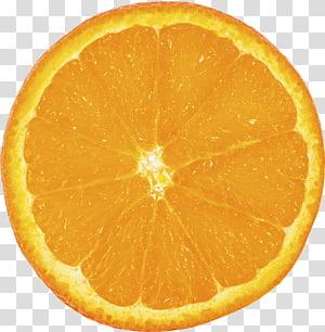 Orange Slice transparent background PNG cliparts free download.