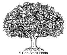 Apple tree Stock Illustrations. 8,341 Apple tree clip art images.
