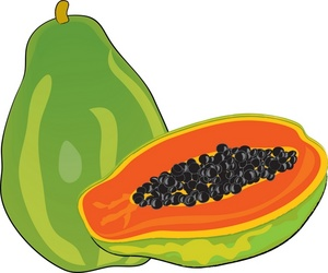 Clipart papaya fruit.