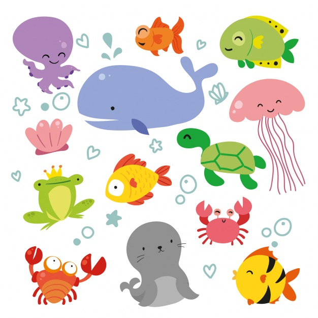 Fish Vectors, Photos and PSD files.