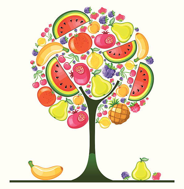 Fruit Tree Clip Art, Vector Images & Illustrations.