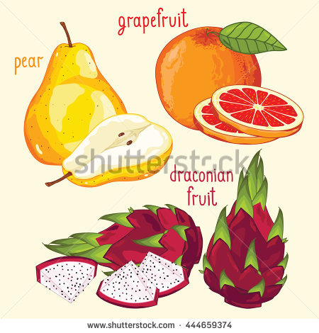 Vector Images, Illustrations and Cliparts: Set of fruit mix vector.