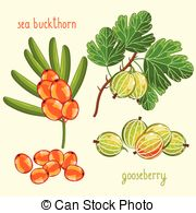 Fruit mix Clip Art Vector Graphics. 3,091 Fruit mix EPS clipart.