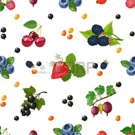 Wild fruits clipart #8