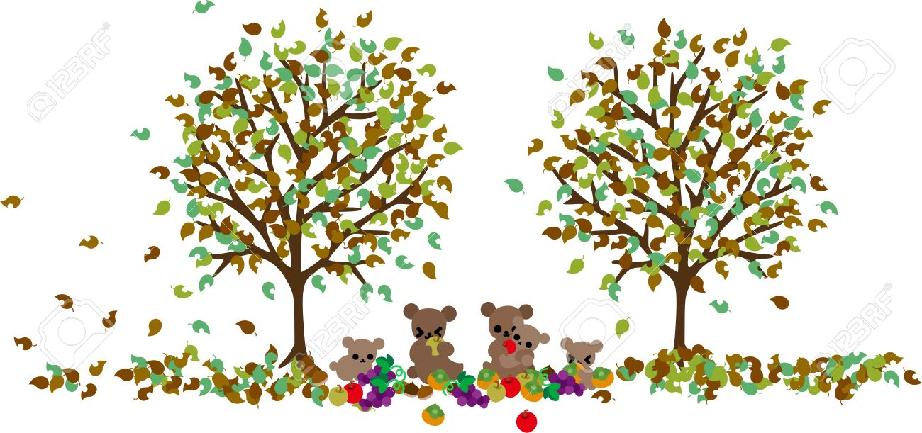 A Bear Family Is Filling Their Mouth With Autumn Fruits In The.
