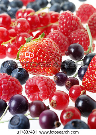 Stock Photography of Fruits Of The Forest u17837431.