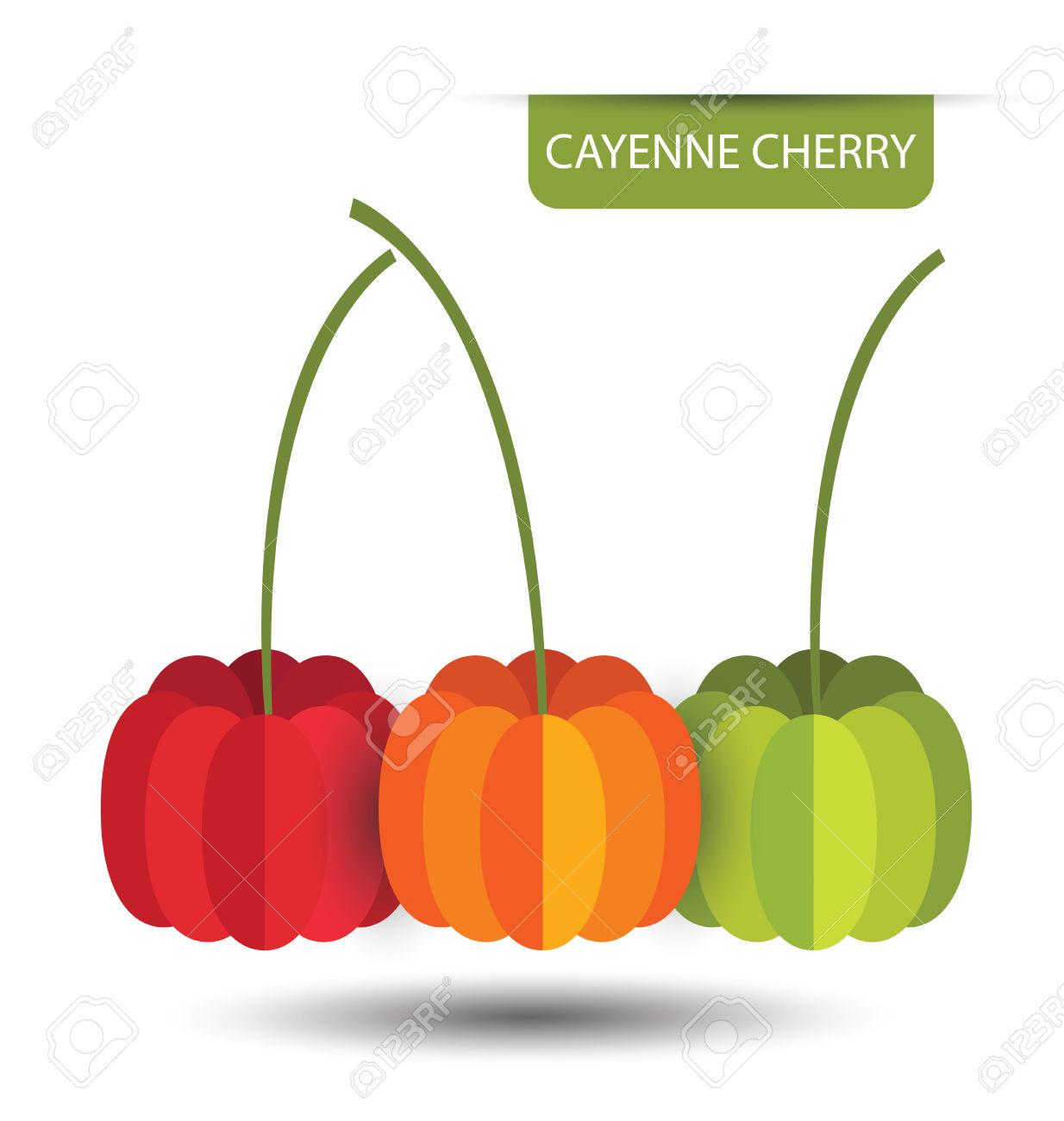 Pitanga Cherry, Fruit Vector Illustration Royalty Free Cliparts.