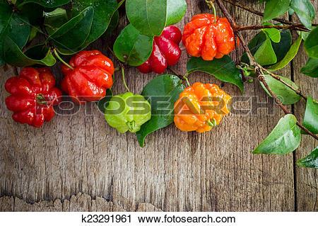 Stock Photography of Tropical fruit also called Pitanga, Brazilian.