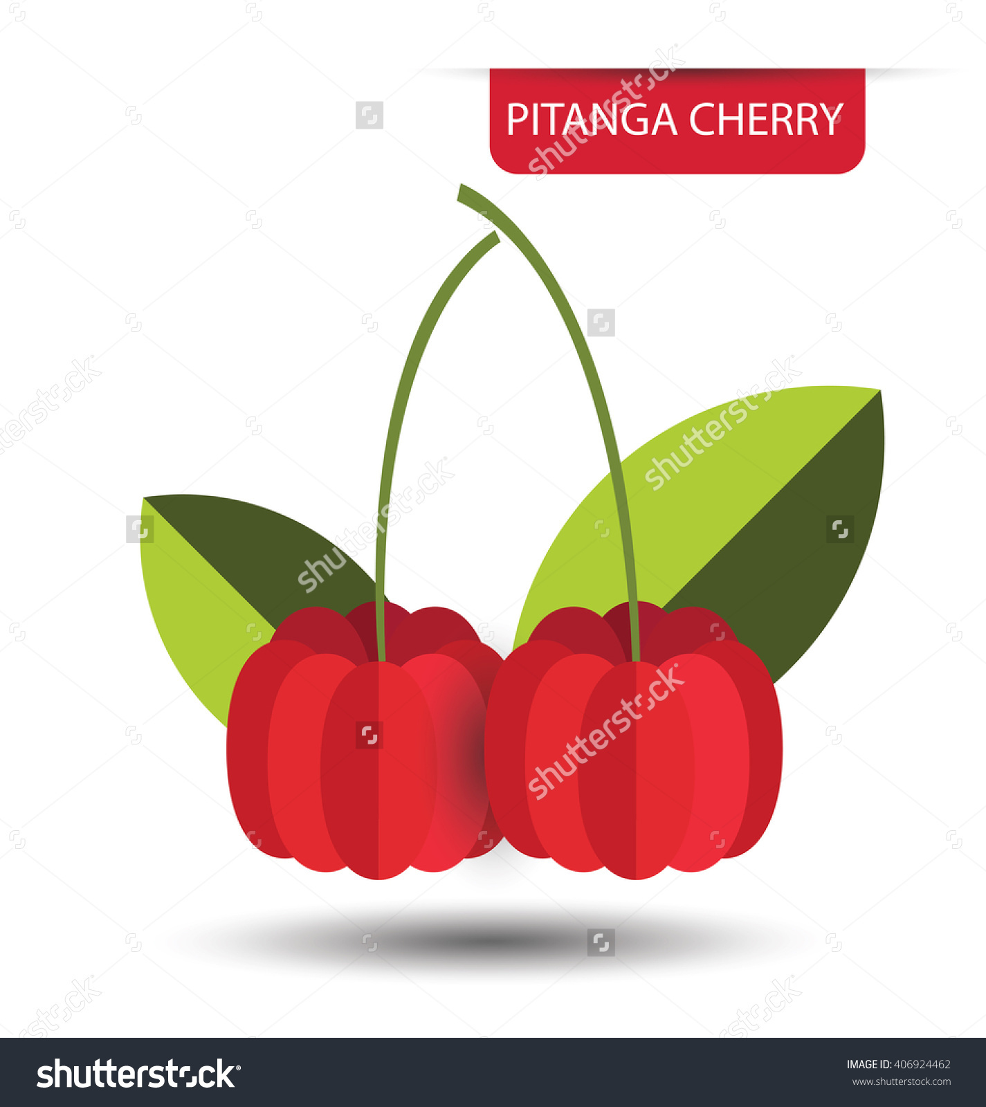 Pitanga Cherry Fruit Vector Illustration Stock Vector 406924462.