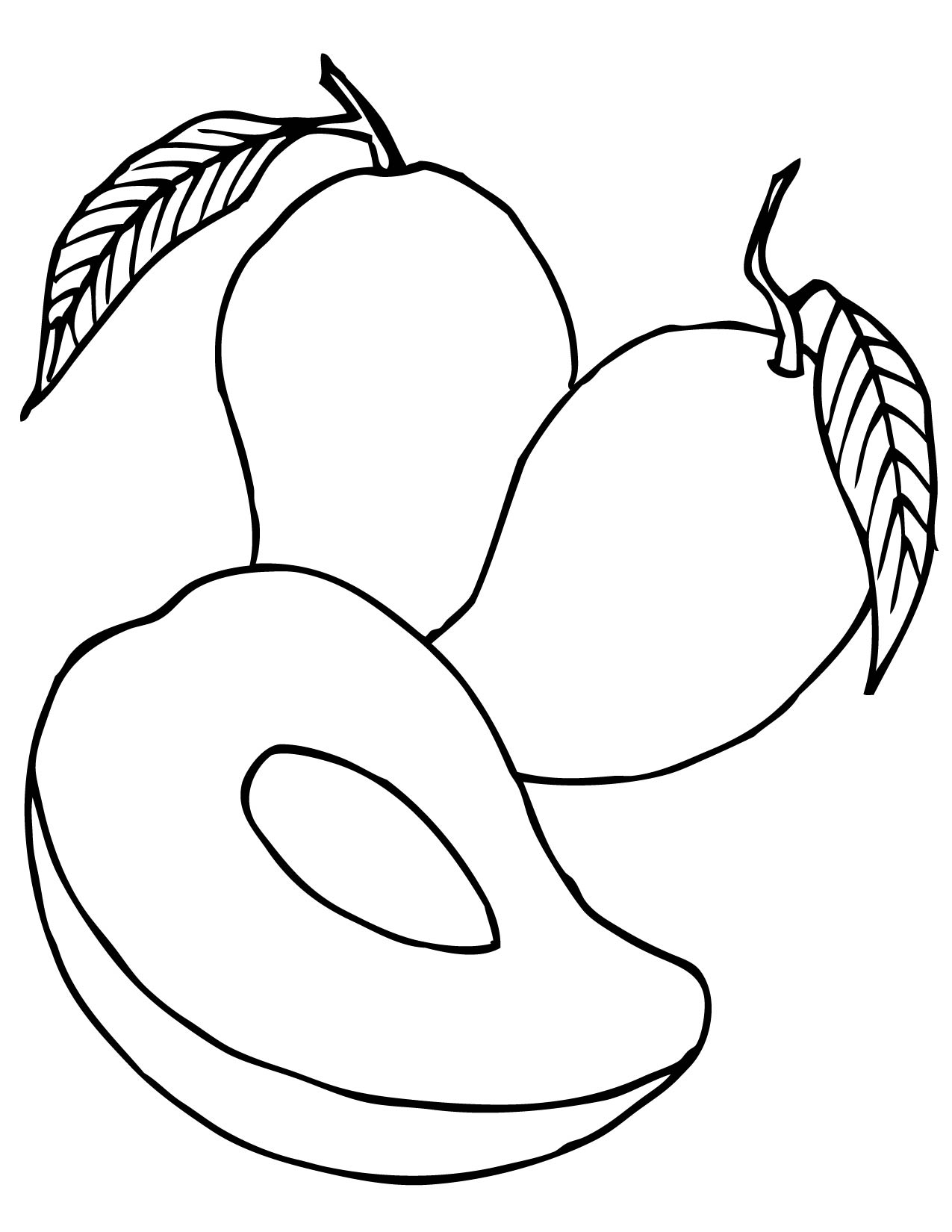 line of fruit clipart in color #16