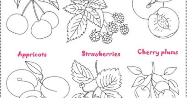 Free Coloring Pages: Fruit Salad/ Salade de fruits *** Coloring.