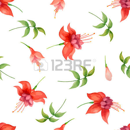 6,192 Fuchsia Stock Vector Illustration And Royalty Free Fuchsia.