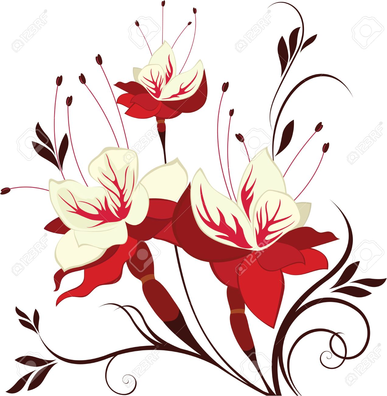 Flower Fuchsia, Decorative Composition, Bunch Of Flowers Royalty.