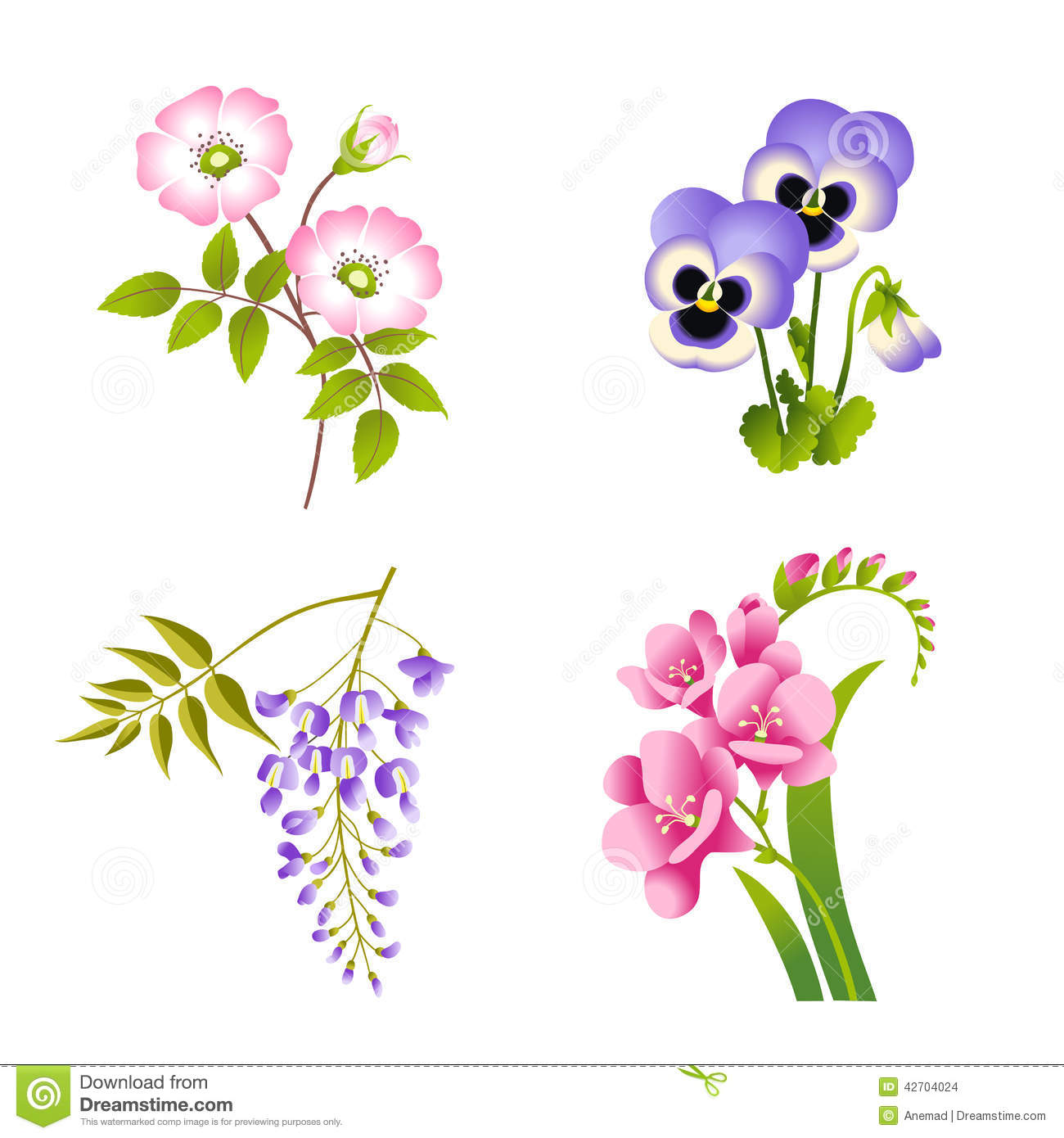 Roses, Pansy, Wisteria And Fuchsia Flowers Stock Vector.
