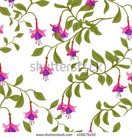 Fuschia Flower Stock Photos, Royalty.