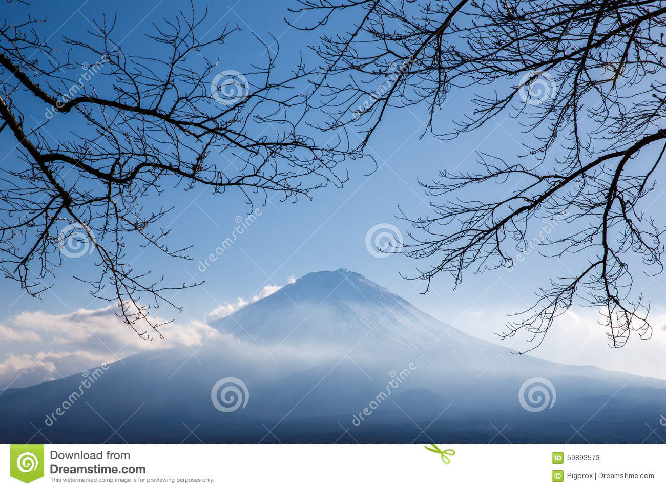 Fujisan Stock Illustrations.