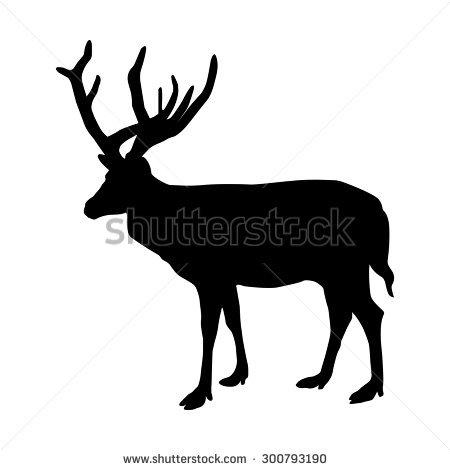 Isolated Deer Full Body Stock Vector 512067286.
