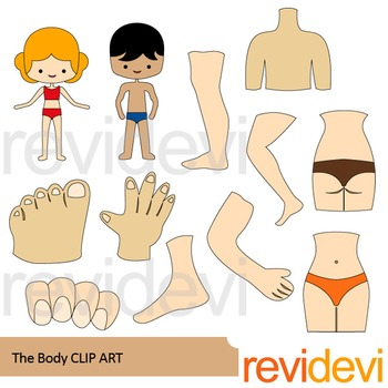 The body clip art.