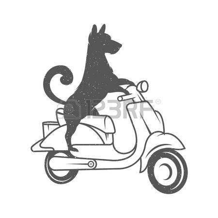 28,179 Funny Dog Stock Vector Illustration And Royalty Free Funny.