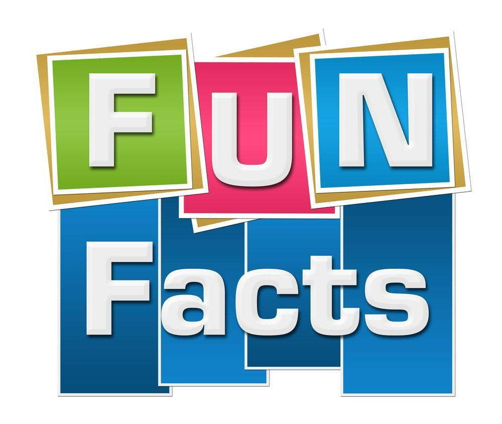 Fun facts clipart 8 » Clipart Portal.