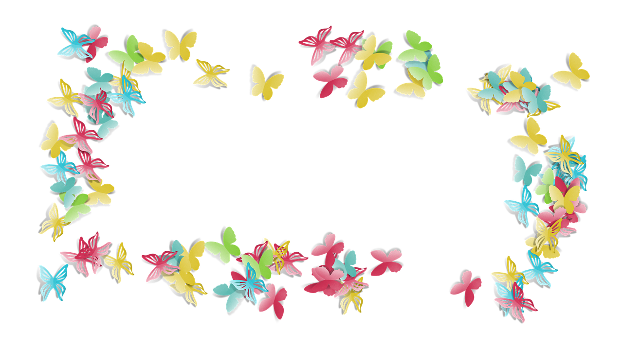 Butterfly Colorful Fun Frame PNG.