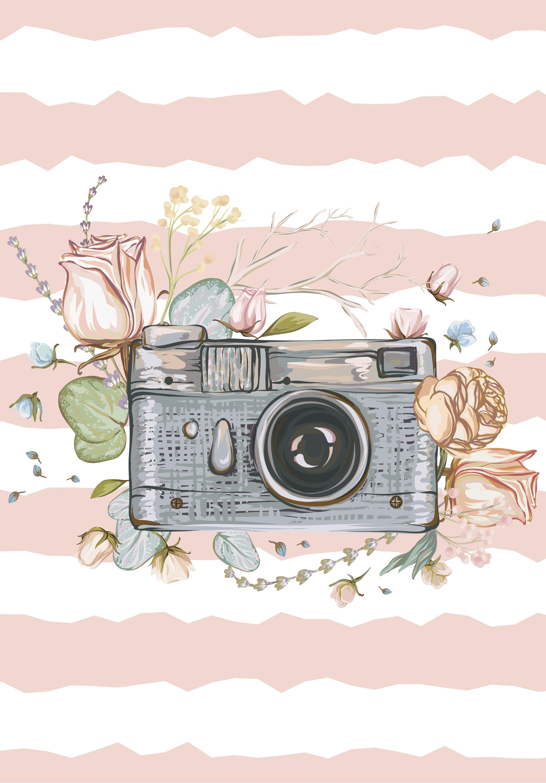 wallpaper câmera fotografica; fotografia; flores; rosas.
