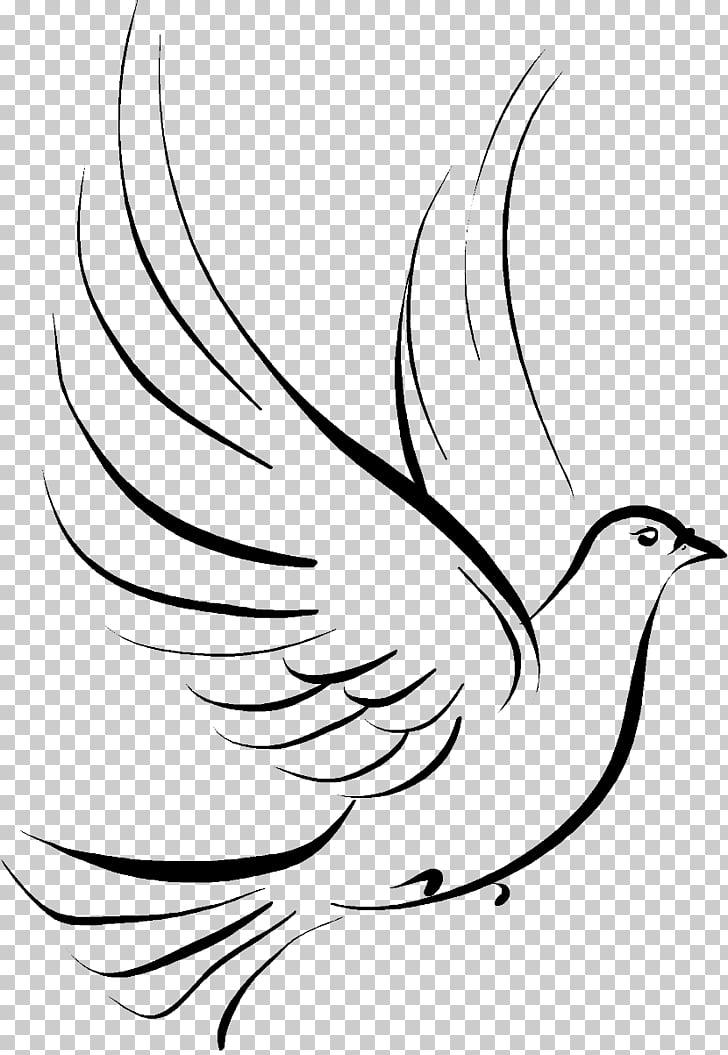 Columbidae Doves as symbols Drawing , funeral, black bird.