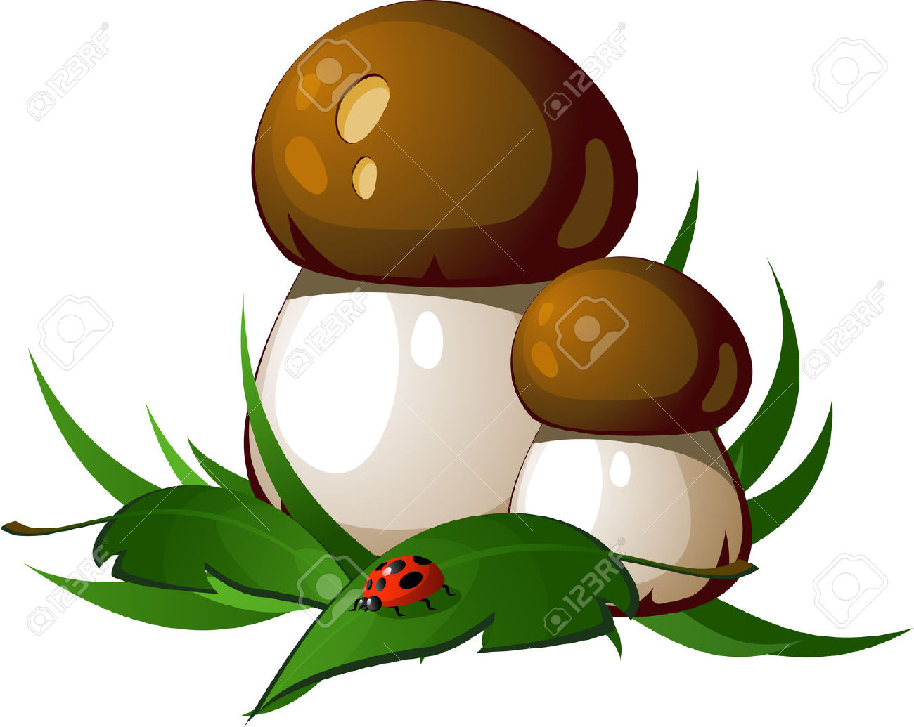 Ceps In The Grass. EPS8 Royalty Free Cliparts, Vectors, And Stock.